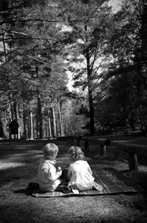 family photos 01 MOMENTO photography
